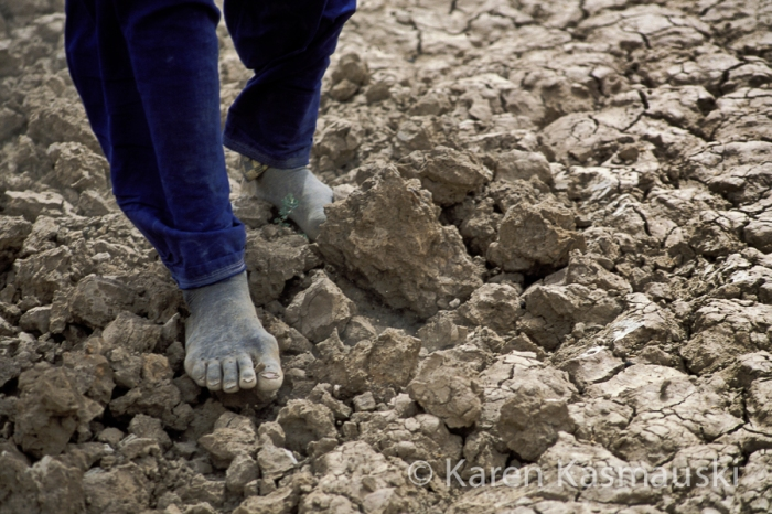 Mali farmer walks across  the devastated soil that use to be his garden during  the height of a drought.